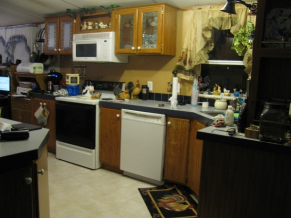 Need advice (mirrored kitchen cabinets)-kitchen.jpg