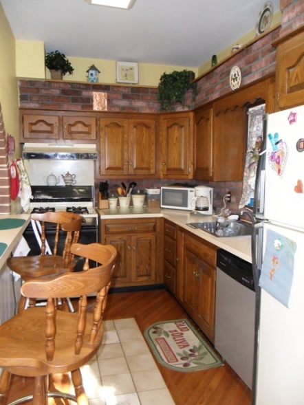 Kitchen Cabinet Suggestions + General Kitchen Suggestions-kitchen-old2.jpg