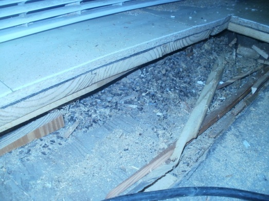 Layers under my kitchen floor-kitchen-rat-poop-layer.jpg