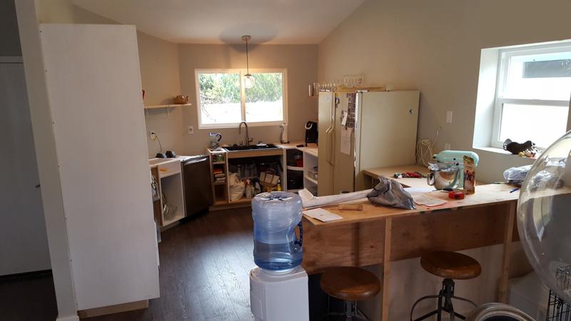 Custom Kitchen Boxes Built, Drawer Glide Suggestion-kitchen1.jpg