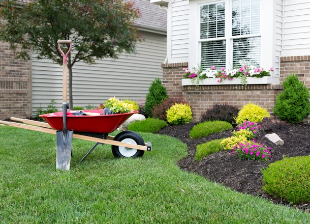 Getting Started with Garden and Landscape Design