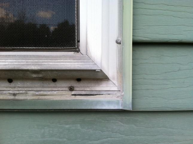 Aluminum Window Replacement-laundryexterior.jpg