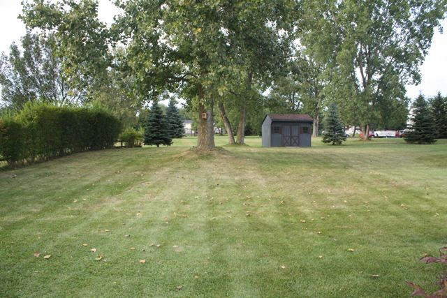 New Home... Existing Lawn-lawn.jpg