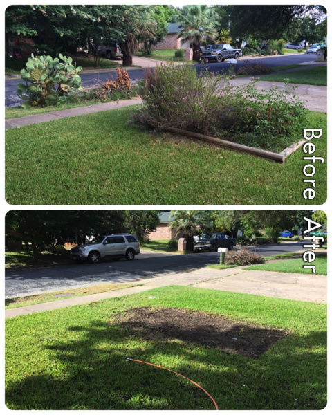 How Hard to Remove Planter?-lawn.jpg