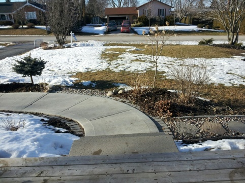Backyard skating rink-lawn.jpg