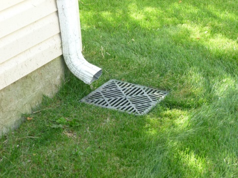 Standing Water in Underground Pipe w/French Drain??-lawn1.jpg