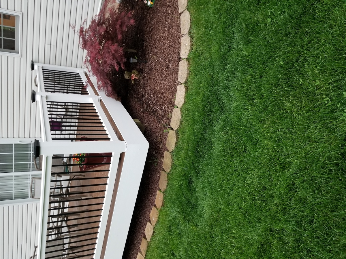 Drainage issue. Need advice!!-lawn3.jpg
