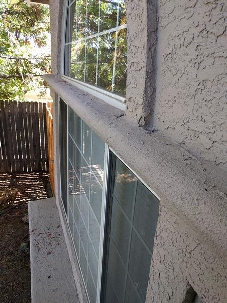 Squirrel squatter-ledge2.jpg