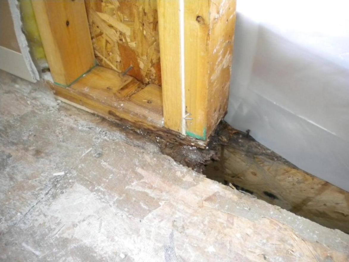 Rotten bottom plate and subfloor around exterior door-left_bottom.jpg