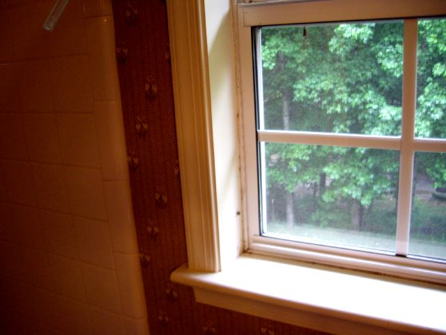 "Replacing ""Aluminum Flared"" Windows?-leftside-distance.jpg"