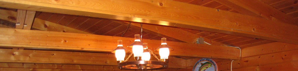 Log cabin re-wire advice on lighting (nec questions)-lights-2.jpg
