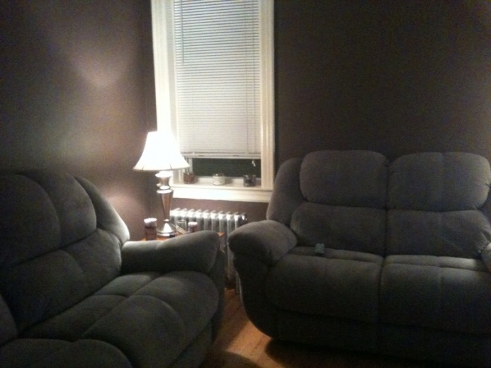 Decorating Ideas for a Dark Colored Room HELP!!!!-living-room.jpg