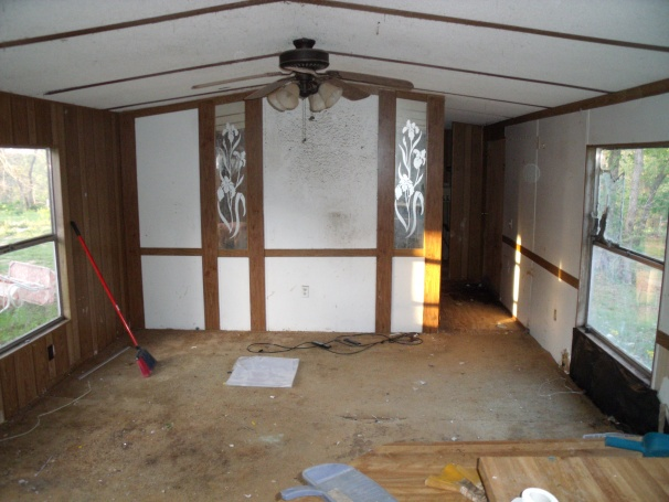 Remodeling living room walls