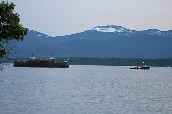 Gulf Island Building.-log-barge.jpg