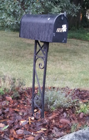 Mailbox Mishap-mailbox.jpg