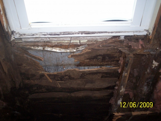 OMG rotted wallz!!-maries-picture-005.jpg