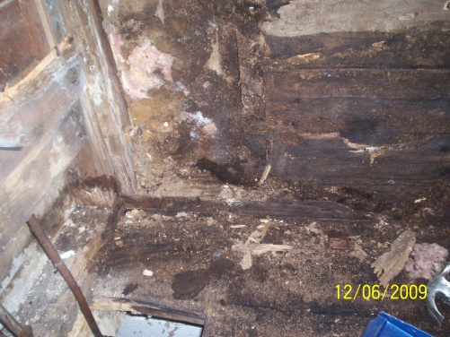 OMG rotted wallz!!-maries-picture-008.jpg