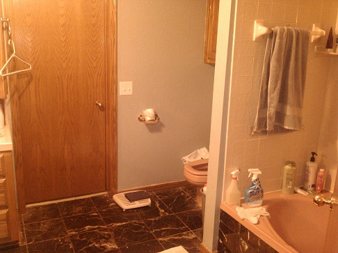 master bath needs a separate shower-master-bath-3.jpg