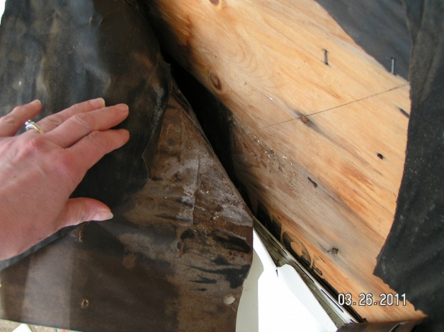 Moisture discovered between vinyl siding, tar paper, and plywood sheeting-master-file-062.jpg