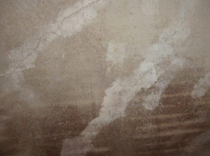 Floor and wall???-masterbedroom-wall.jpg