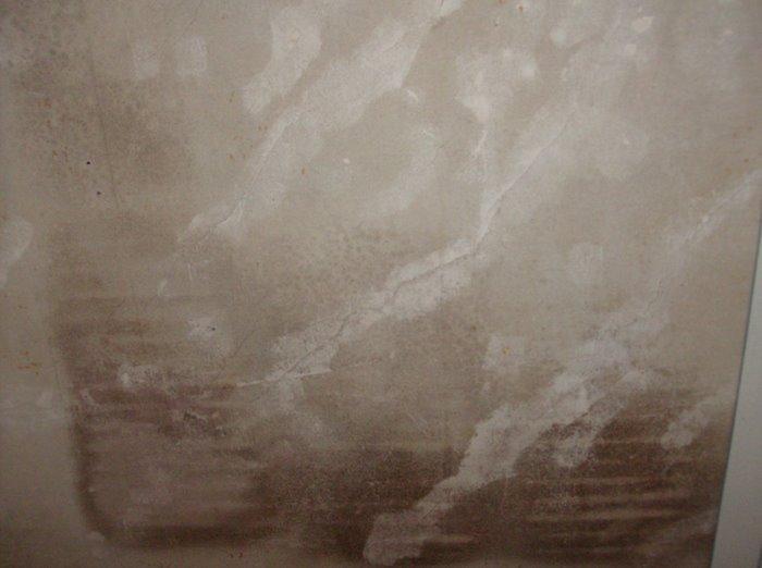 Floor and wall???-masterbedroom-wall2.jpg