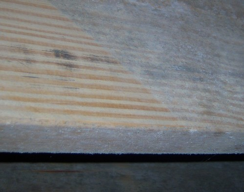 Something eating my new floor joists???-maybemold.jpg