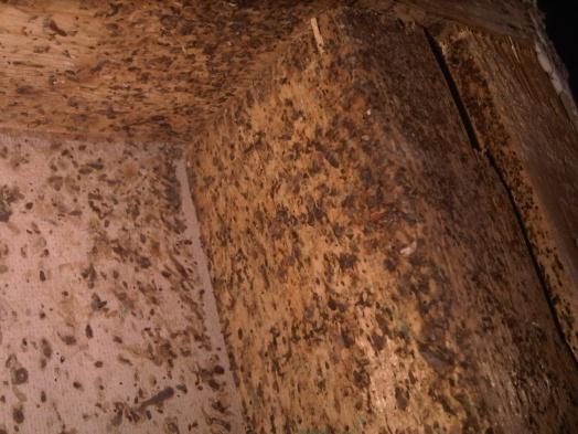 Messy Crap Behind Drywall In Bathroom General Diy