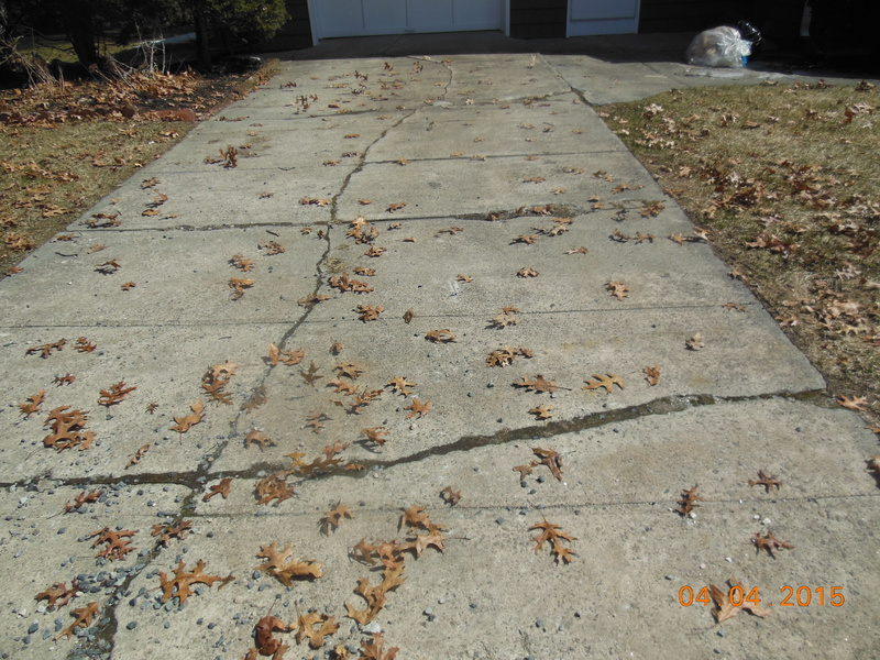 New Drivewqay, hardscape for the sides?-methuen-update-n-dogs-063.jpg