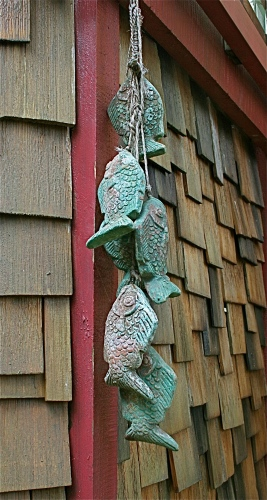 Gulf Island Building.-mexican-fish.jpg