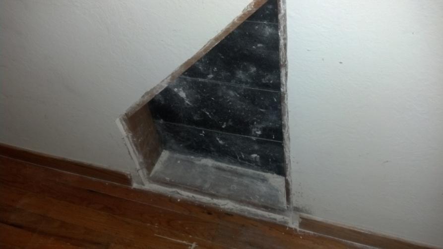 Mold on sheet rock-mold-2.jpg