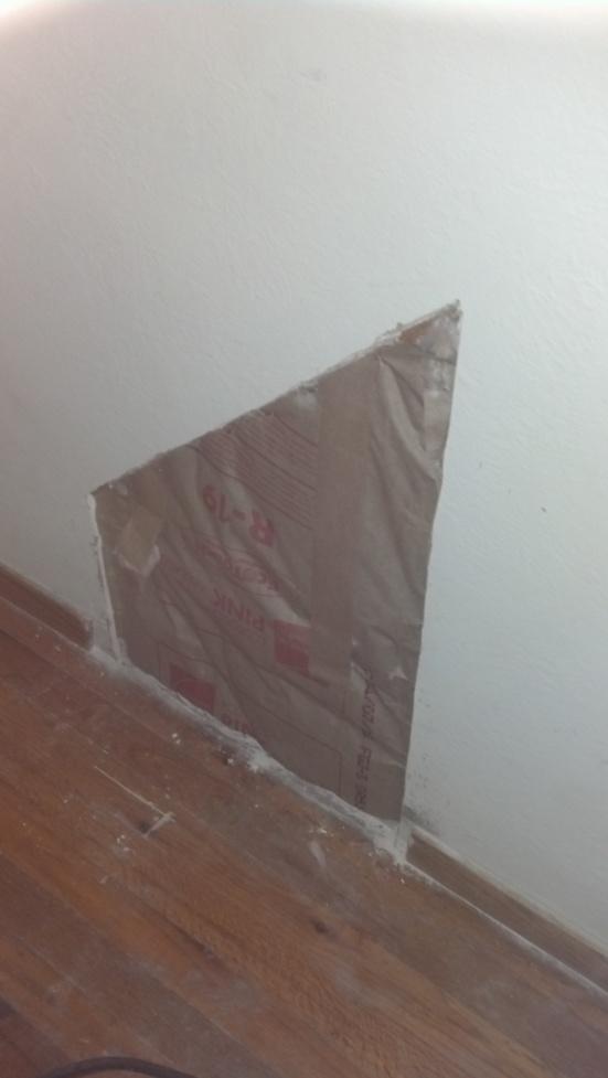 Mold on sheet rock-mold-4.jpg