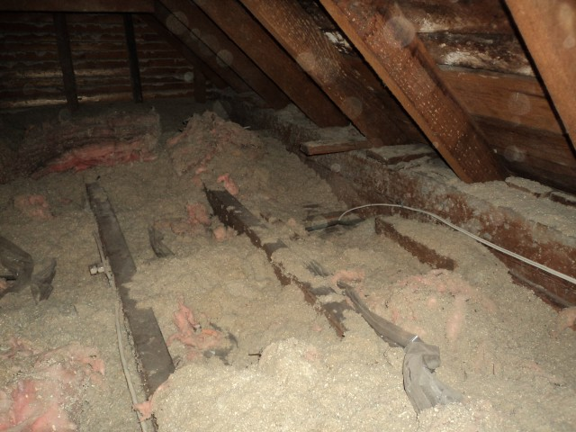 Help :) electricians moved insulation-mold2.jpg