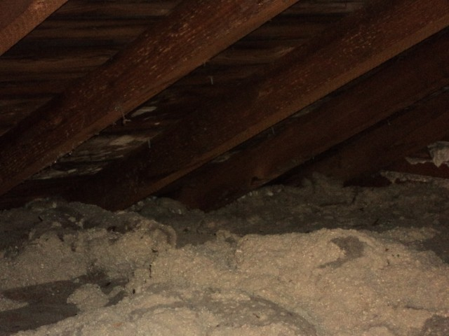 Help :) electricians moved insulation-mold3.jpg
