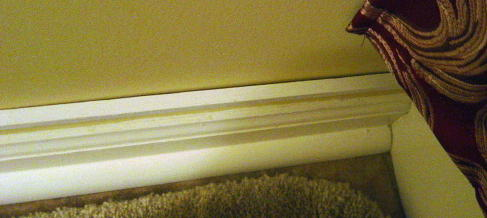 Help with adding a strip of molding over baseboard.-molding_2.jpg