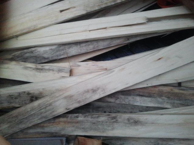 Moldy Lath Strip Bundles-moldy-lath-strips.jpg