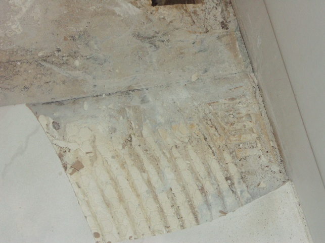 damaged subfloor by tub-more-floor-pics-008.jpg