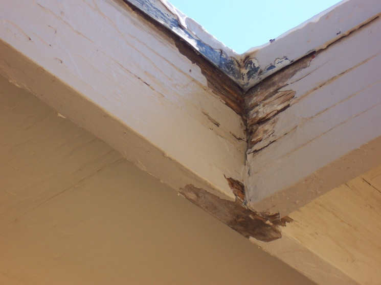Rotting Fascia Boards-more-house-shit-186.jpg