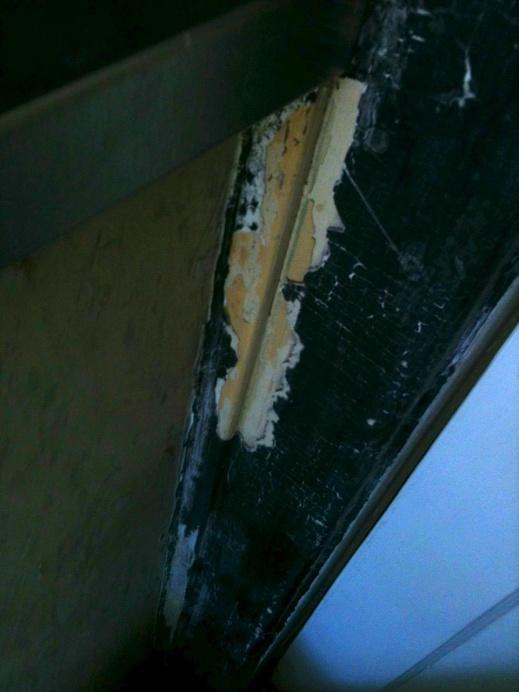 Stripping Moulding; is this wood filler or primer?-moulding-4.jpg