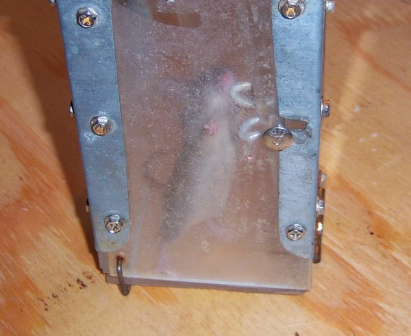 Yes Dear, I'll build you a better mousetrap....-mouseintrap1.jpg