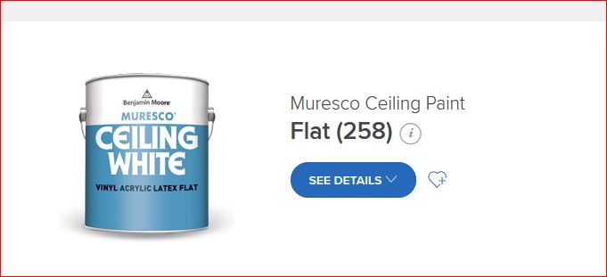 Ceiling Paint Painting Diy