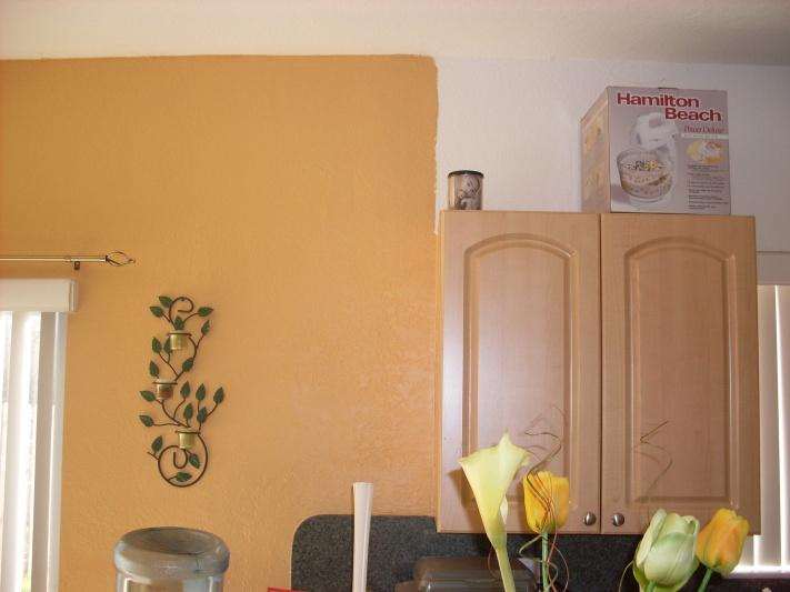 painting my kitchen has cause me a awful headache-my-kitchen-004.jpg