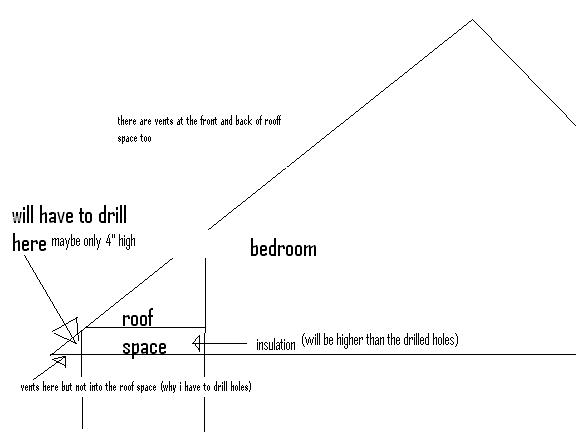 drilling vent holes-my-roof.jpg