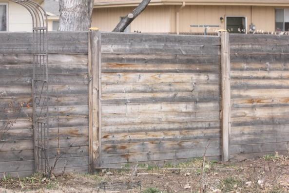 Cedar Wood Fence - Staining again-new-fence-03.jpg