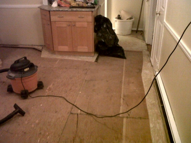 Got old floor up - OK experts....what next - pic inside-new-image.jpg