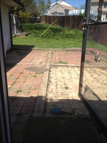 Need some patio advice.-new-image.jpg
