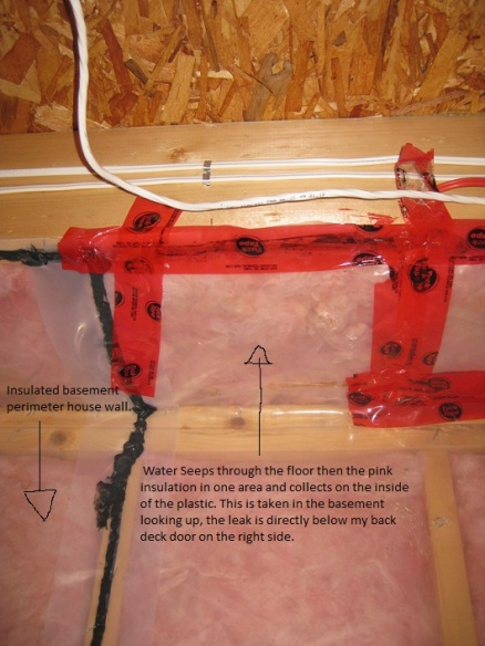 Water leaking in through door on main floor down to basement.-newbasementleak.jpg
