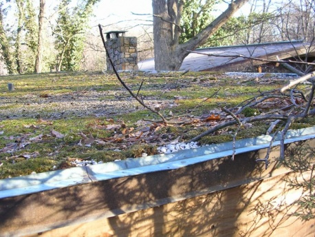 Flat roof and insulation quandry-old_roof_sm.jpg