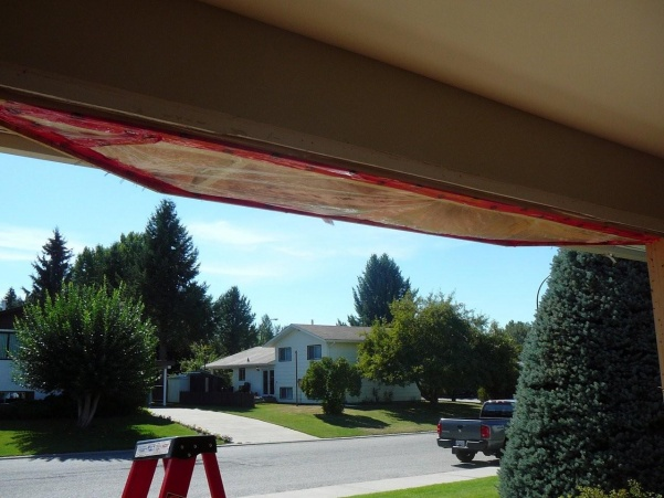new hardi siding and windows - what have I started? aargh!-outside-reno-09-027.jpg