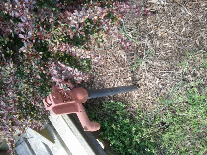 Can anyone tell me what this is?-outside-spigot.jpg