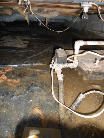 Leaking by well pipe entering house-overview.jpg
